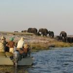 Zambezi queen 4